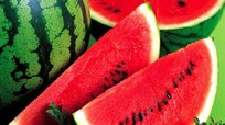 Thực phẩm chống nắng từ bên trong cơ thể