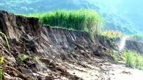 Đất bãi bồi ven sông Lam tại huyện Con Cuông bị sạt lở nghiêm trọng