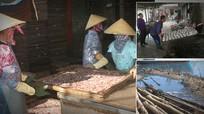 Giải pháp nào để xử lý ô nhiễm môi trường tại các khu công nghiệp, làng nghề ở Nghệ An?