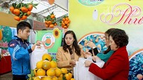 Hơn 36 tấn cam được tiêu thụ tại Hội chợ cam Vinh - Nghệ An 2018