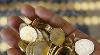 Ngân hàng Nhà nước đấu giá hơn 600 tấn phế liệu tiền xu