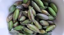 Ông nông dân trồng 'chanh ngón tay' thu 2 triệu đồng/kg