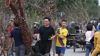 Nghệ An: Tấp nập mua đào, quất giá rẻ ngày 29 Tết