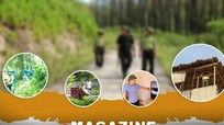 Ngăn chặn lửa rừng - Bài 1: Chủ động triển khai các giải pháp