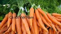 Nhận biết nhanh 8 loại rau, củ Trung Quốc giả mạo hàng Việt bán dịp Tết
