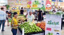Su su Hoàng Mai Nghệ An chính thức vào siêu thị