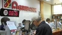 Nhân viên ngân hàng lén rút tiền trong sổ tiết kiệm khách hàng