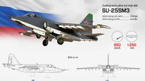 Nga xác nhận phi công Su-25 tự sát bằng lựu đạn khi bị phiến quân bao vây