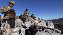 Quân thân chính phủ Syria tiến vào vùng chiến sự Afrin, Thổ Nhĩ Kỳ nã pháo