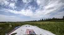 Đức kêu gọi Nga hành động có trách nhiệm trong việc giải thích vụ MH17