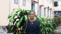 Cụ bà người Mông 94 tuổi ở Nghệ An có mái tóc dài gần 4m