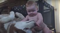 Thót tim xem cảnh cậu bé gần 1 tuổi chơi với chó cưng