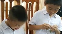 Hai cậu bé bị trao nhầm ở Ba Vì được trả về cho bố mẹ đẻ