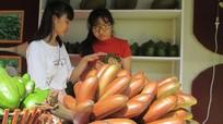 Thực hư loại chuối đỏ 'gây sốt' khi có thông tin giá 300.000 đồng/kg