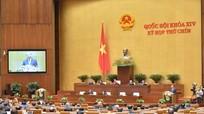 Chính phủ trình Dự án Luật Bảo vệ môi trường (sửa đổi)