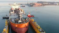 Nga và Việt Nam sẽ phát triển hợp tác trong lĩnh vực đóng tàu
