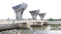 Nghệ An: Phân bổ, giao 100% vốn vay nước ngoài năm 2020 cho các chương trình dự án