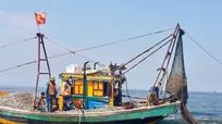 Nghệ An xử phạt 4 tàu cá vi phạm