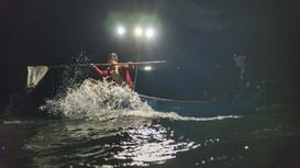 Xuyên đêm theo thuyền 'săn' cá cháo ở Nghệ An