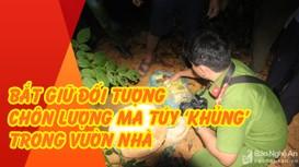 Cận cảnh khám xét, bắt giữ đối tượng chôn lượng ma túy 'khủng' trong vườn nhà