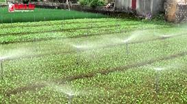 Nông dân Nghệ An với những mô hình sản xuất chống biến đổi khí hậu