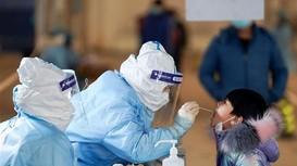 Thế giới chống dịch: LHQ yêu cầu Trung Quốc hợp tác điều tra Covid-19