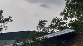 Lốc xoáy khiến lúa chiêm bị đổ rạp, nhiều nhà dân bị tốc mái