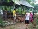 2 con bò bị sét đánh khi đang ở trong chuồng