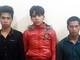 Nhóm thanh niên bị bắt vì cướp 8 con gà