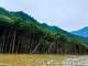 Dấu hỏi lớn về thủy điện nhỏ trong khu sinh quyển...