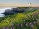 10 ngọn hải đăng có tầm nhìn đẹp nhất thế giới