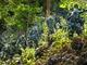 Tết xa nhà của những người lính bám chốt phòng, chống dịch Covid-19