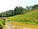 Đã tìm thấy thi thể bé gái 11 tuổi đuối nước ở Đô Lương
