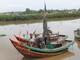 Diễn Châu: Bảo vệ rừng ngập mặn
