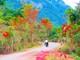 Mênh mang trên cung đường đẹp nhất miền tây xứ Nghệ