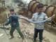 Nghệ An: Bắt được hổ mang chúa dài hơn 3m