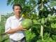 Liên kết để sản xuất nông sản an toàn