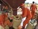 Thức ăn chăn nuôi: Nghịch lý thiếu, thừa
