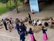 Sôi nổi hội thi đánh tranh lá mía truyền thống ở Khu di tích Kim Liên