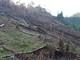 Lãnh đạo huyện Quỳ Châu đối thoại với người dân sau vụ phá rừng