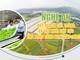 [infographic] Nghệ An quy hoạch cây trồng và vật nuôi chủ lực ứng dụng công nghệ cao