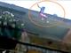 Bé gái 12 tuổi nhảy từ tầng 4 để trốn 'yêu râu xanh'