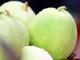 Nghi Lộc: Dưa lê được mùa, được giá