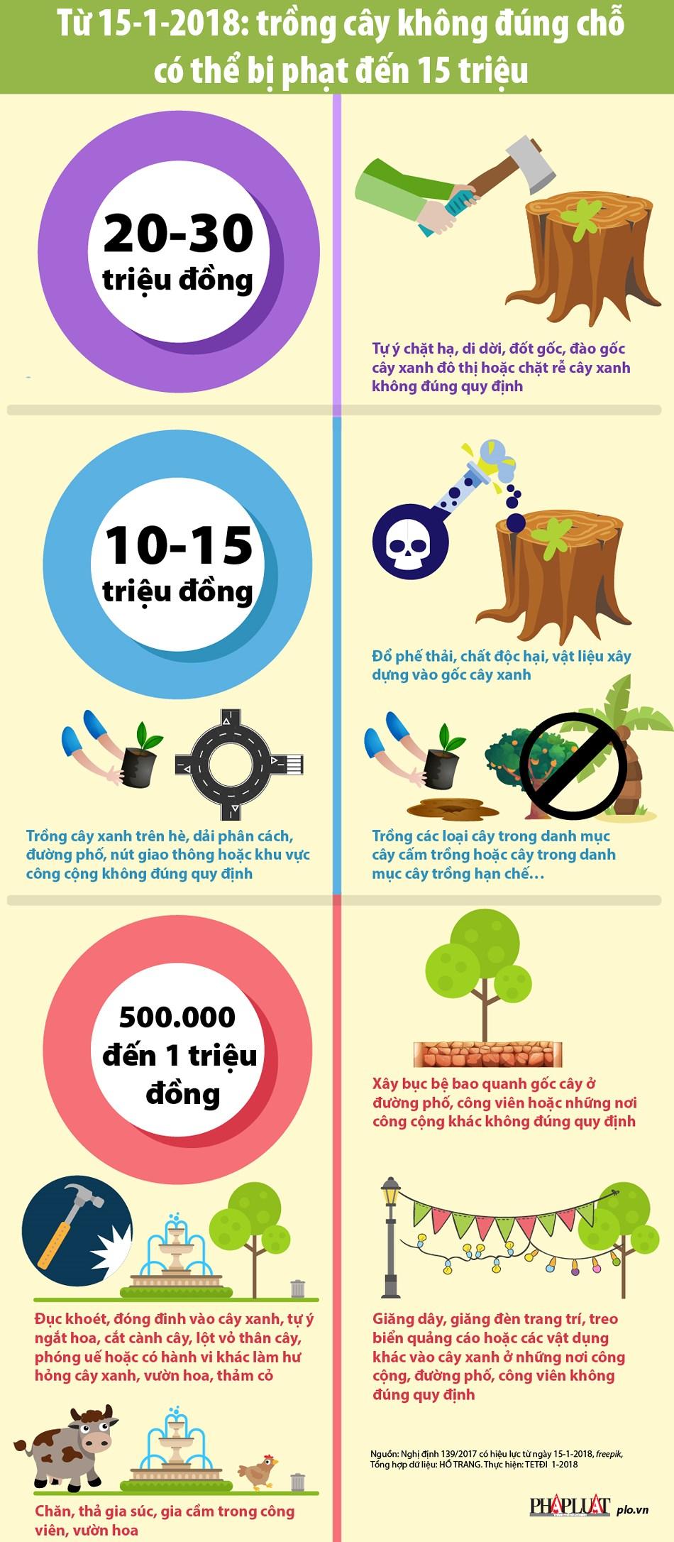 Từ 15/1: Trồng cây sai chỗ có thể bị phạt đến 15 triệu - ảnh 1