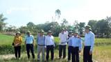 Nghệ An đề nghị hỗ trợ 3.500 tỷ đồng chống hạn vùng Nam - Hưng - Nghi - thành phố Vinh