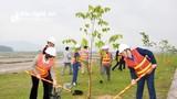 Sở GTVT Nghệ An tổ chức Tết trồng cây