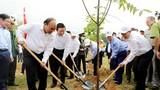 Thủ tướng Nguyễn Xuân Phúc dự Lễ hưởng ứng 'Chương trình trồng 1 tỷ cây xanh - Vì một Việt Nam xanh'