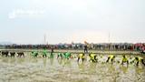 Nghệ An tổ chức lễ hội xuống đồng và Tết trồng cây 'Nông dân ơn Bác'