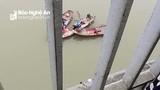 Cảnh sát Nghệ An nỗ lực tìm kiếm người phụ nữ nhảy cầu Bến Thủy tự tử