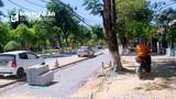 """Thành phố Vinh giải trình về việc xây dựng vỉa hè bị """"tuýt còi"""""""